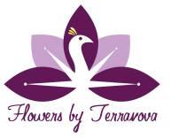 Terranova-c